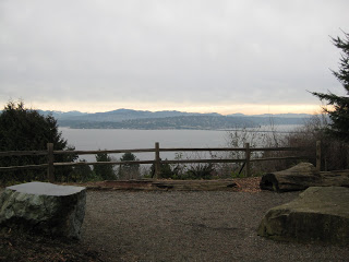 Leschi-Lake Dell Natural Area | Year of Seattle Parks