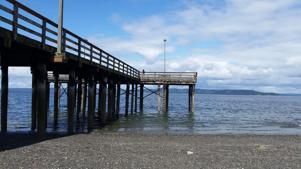 Redondo beach and pier wooton park year of seattle parks for Redondo beach pier fishing